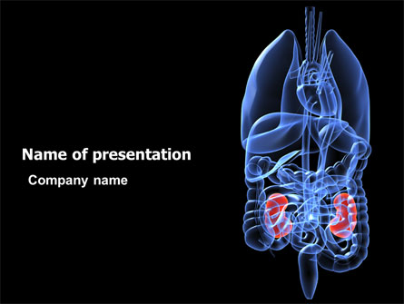 Kidney presentation template for powerpoint and keynote ppt star kidney presentation template master slide toneelgroepblik Choice Image