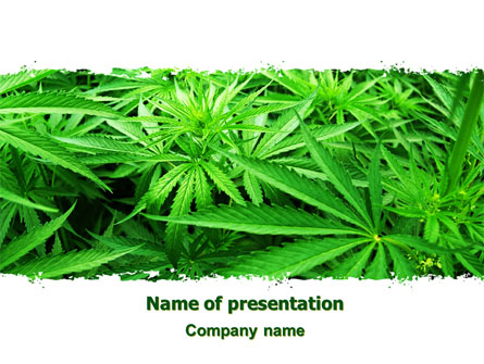 weed leaf template - cannabis presentation template for powerpoint and keynote