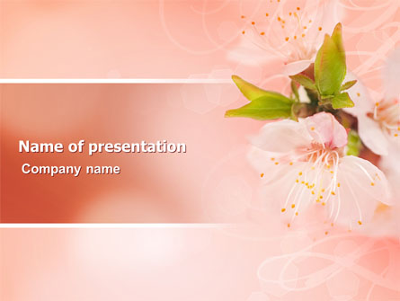 Peach Colored Presentation Template for PowerPoint and ...