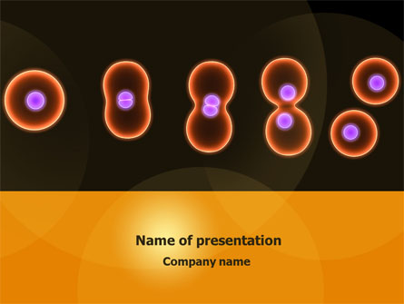 Cell Amitosis Presentation Template For Powerpoint And Keynote Ppt