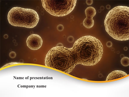 Cell Meiosis Presentation Template For Powerpoint And Keynote Ppt Star
