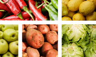 Vegetables Collage Presentation Template