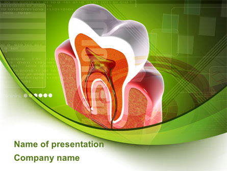 Tooth In Section Presentation Template, Master Slide