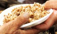 Charitable Food Presentation Template
