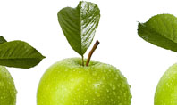 Green Apples Presentation Template