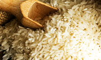 Grains Of Rice Presentation Template