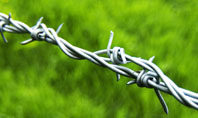 Barbed Wire Fence Presentation Template