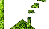 Green House Idea Presentation Template