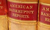 American Bankruptcy Law Presentation Template