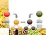Vegetarian Foods slide 19