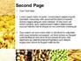 Vegetarian Foods slide 2