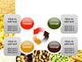 Vegetarian Foods slide 9