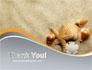 Shells And Starfish slide 20