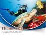 Diving Photo Shooting slide 20