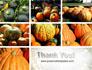 Pumpkin slide 20