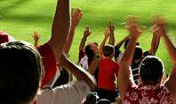 Football Fans Presentation Template
