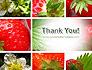 Strawberries Collage slide 20