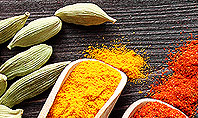 Set of Spices Presentation Template