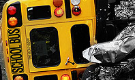School Bus Accident Presentation Template