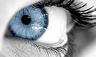 Closeup of Very Blue Eye Presentation Template