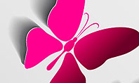 Pink Butterflies Presentation Template