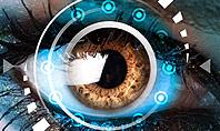 Eye Tracking Presentation Template