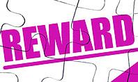Risk vs Reward Presentation Template