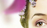 Beauty Parlor Presentation Template