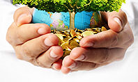Man Hands Holding Money Tree Presentation Template