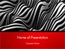 Zebra Abstract Surface slide 1