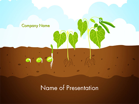 Peas Plant Growth Illustration Presentation Template, Master Slide