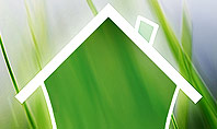 Green House Outline Presentation Template