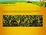 Idyllic Farm Landscape slide 10
