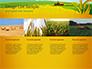 Idyllic Farm Landscape slide 16