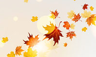 Autumn Leaves and Sunbeams Presentation Template