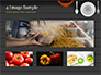 Kitchen Utensil Illustration slide 13