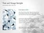 Light Gray Triangular Polygons slide 15