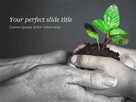 New Life Concept Presentation Template, Master Slide