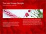 Beautiful Heart of Red Rose Petals slide 14
