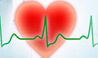 Cardiologist Presentation Template