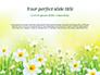 Daffodils slide 1