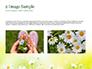 Daffodils slide 11