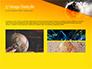 Dark Digital Globe slide 12