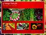 Colorful Rainbow Food slide 13