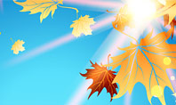 Beautiful Sunny Autumn Presentation Template