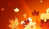 Bright Sunny Autumn Presentation Template