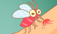 Mosquito Bites Presentation Template
