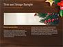 Christmas Mistletoe slide 14