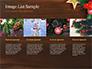 Christmas Mistletoe slide 16