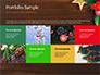 Christmas Mistletoe slide 17
